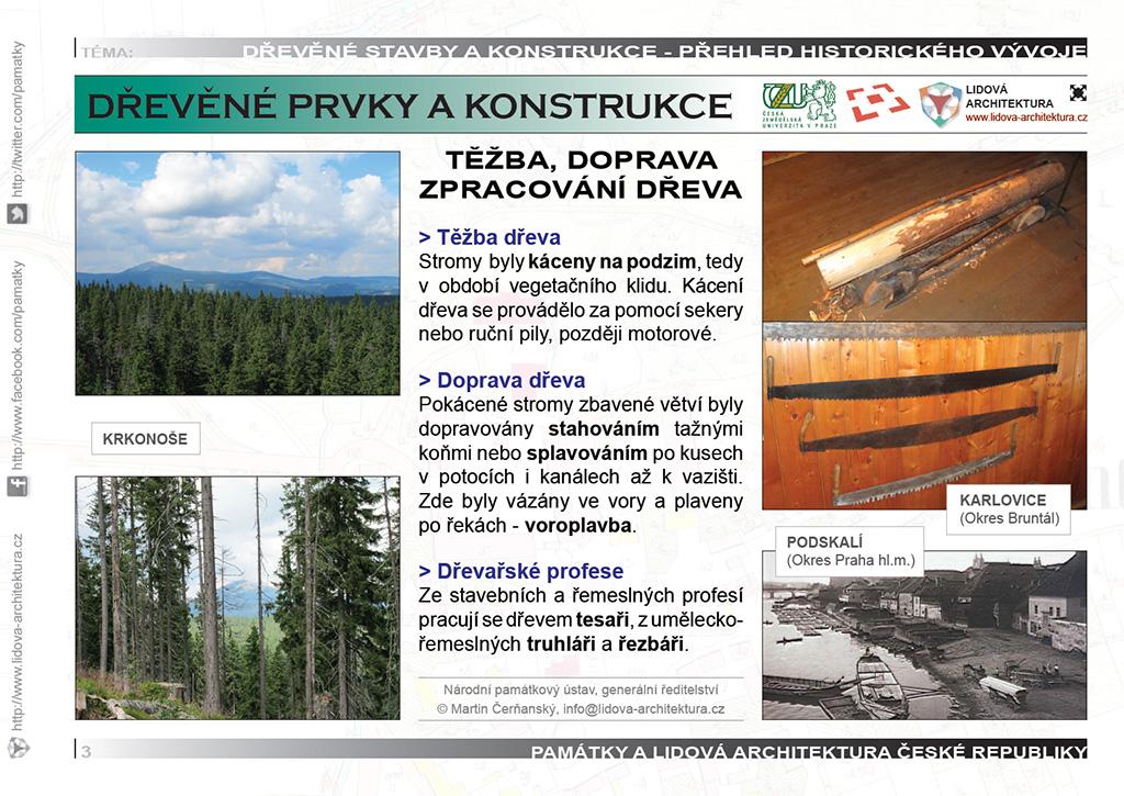 Těžba, doprava a zpracování dřeva